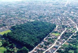 cidade-de-araguari